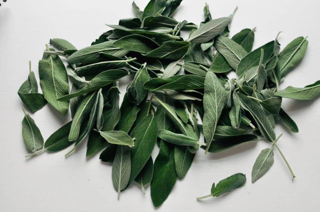 pile of sage leaves
