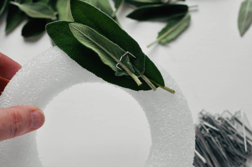 pinning sage to a foam wreath