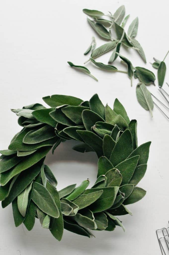sage leaves on a foam wreath