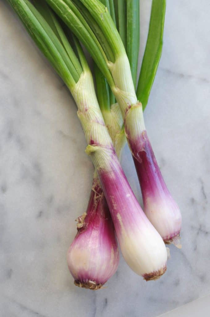 red spring onion
