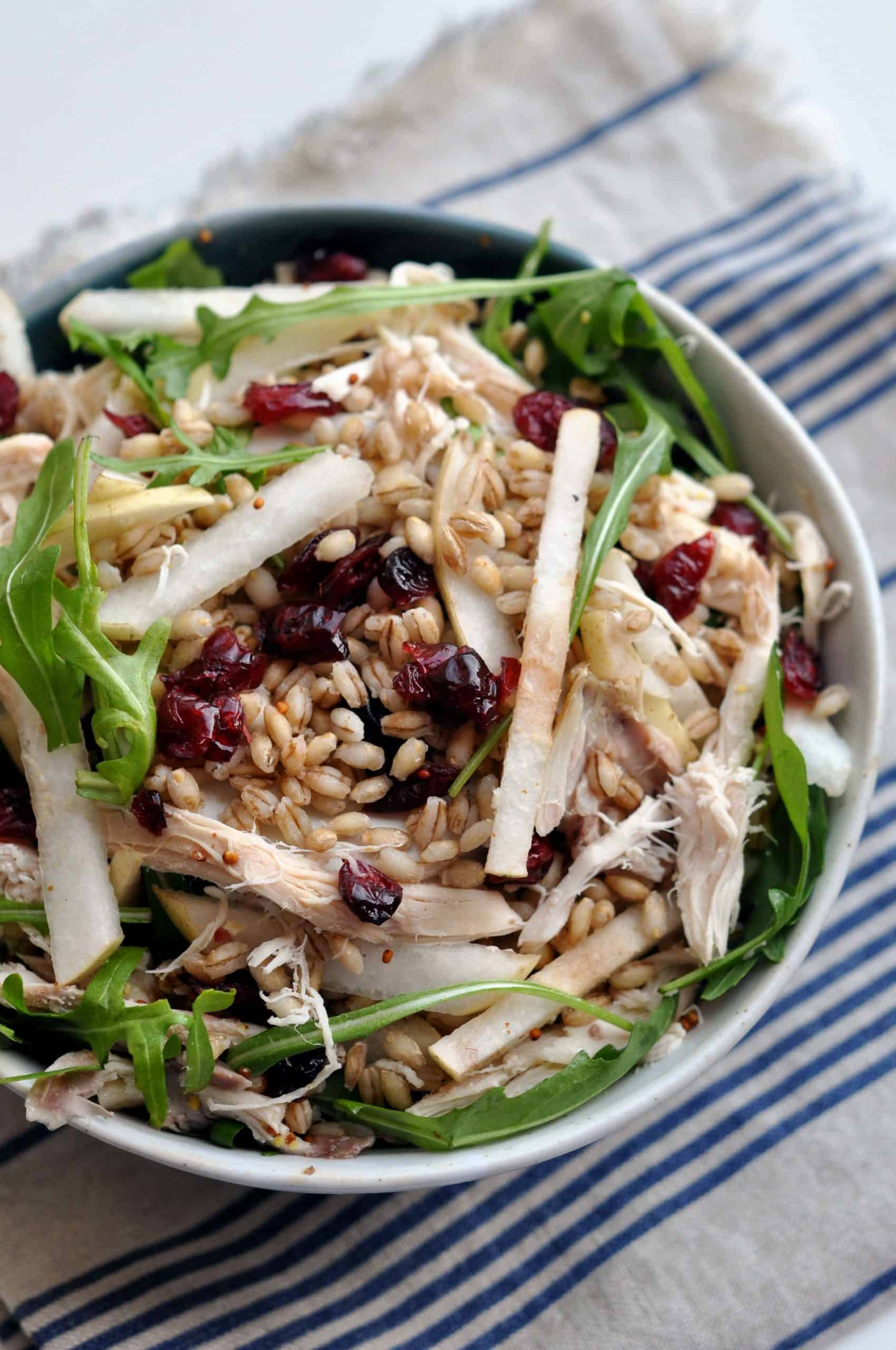 chicken bulgar bowl with apples, arugula, dried cranberries