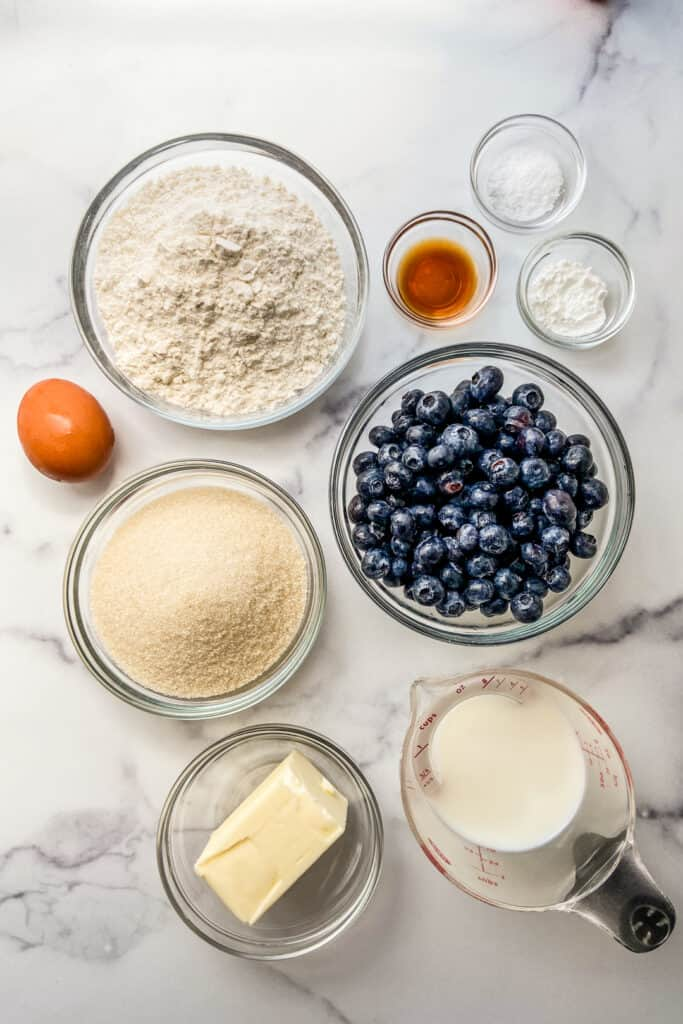 Bowls filled with flour, blueberries, sugar, and butter, next to a measuring cup of milk, a brown egg, and small bowls of vanilla, baking powder, and salt.